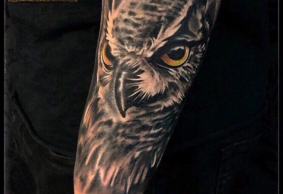 tatuaj aparat foto cu randunici